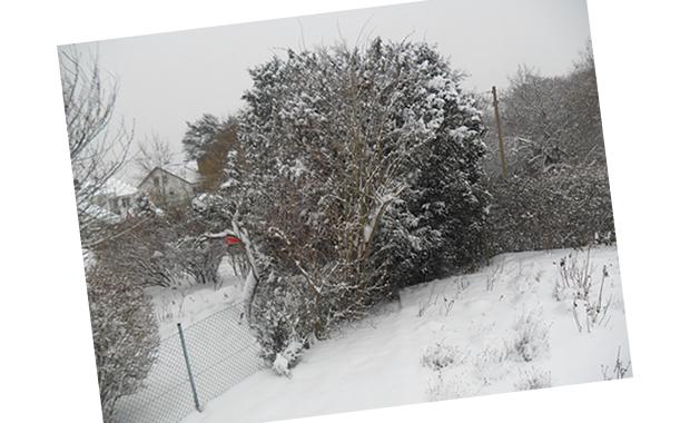 Jardim de inverno - Kassel