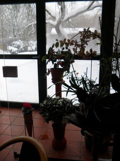 Vista da janela - Kassel